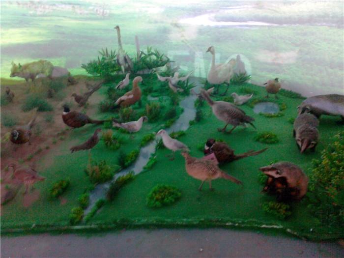 展览馆模型设计